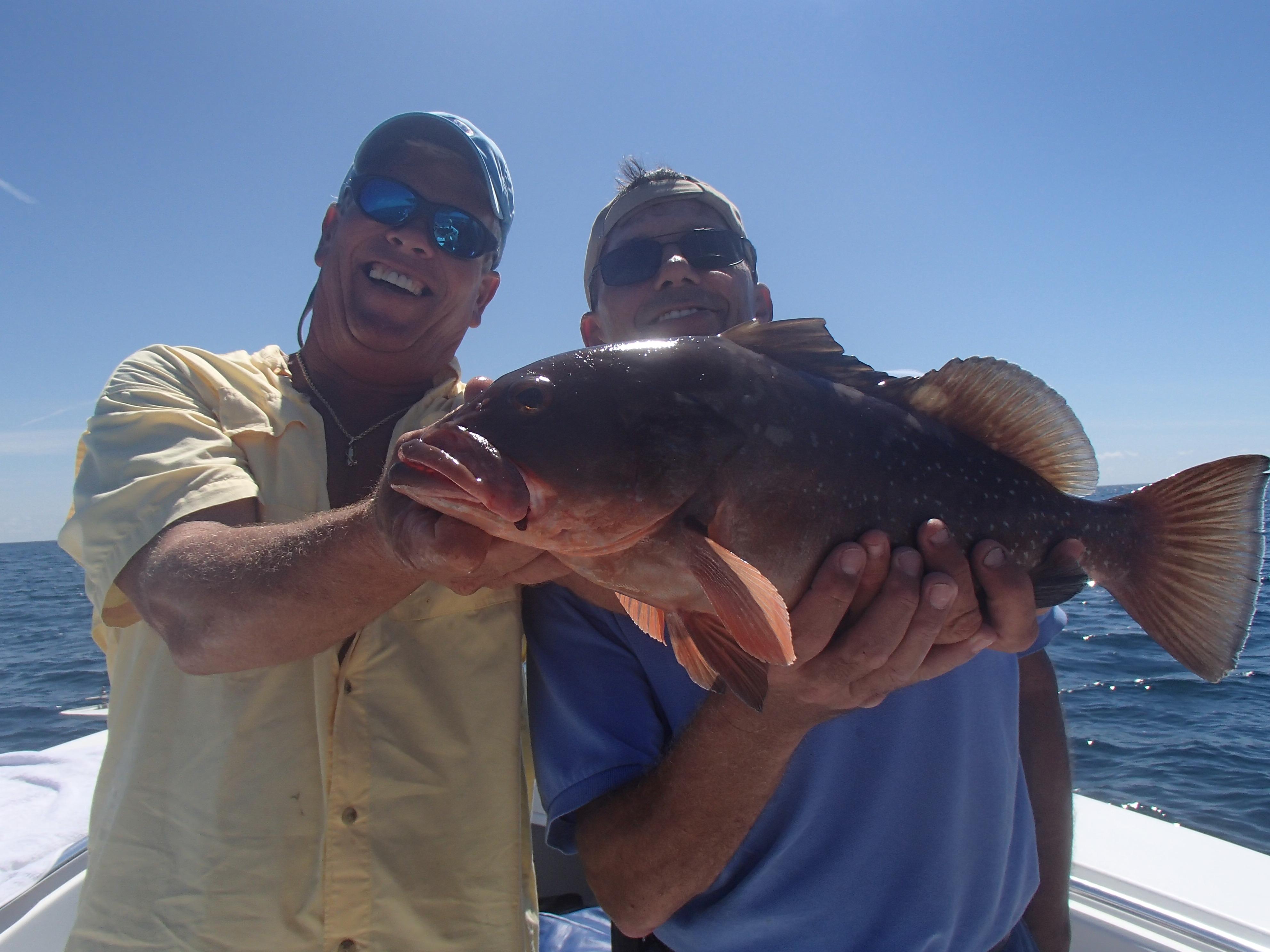 Deep sea fishing trips siesta key fishing charters for Deep sea fishing charters